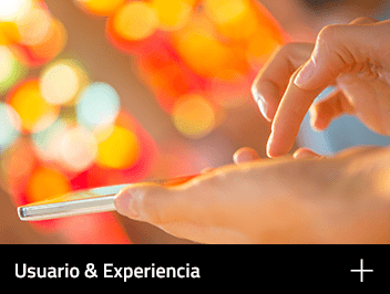 Web-AreasHome_UsuarioExperiencia