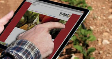 Plymag nuevo cliente Marketing Outsourcing en Alicante