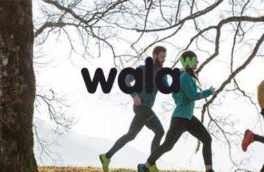 Walashop, Auditoría de mejora de usabilidad, experiencia y analítica web.