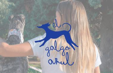 Lifting Group desarrolla la nueva página web para El Galgo Azul