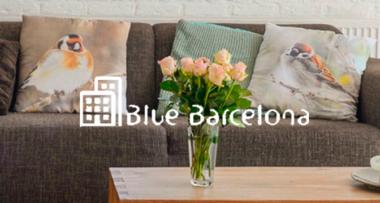 Blue Barcelona confía en Imagine Creative Ideas para el desarrollo de la nueva página web