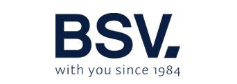 bsv electronic logo